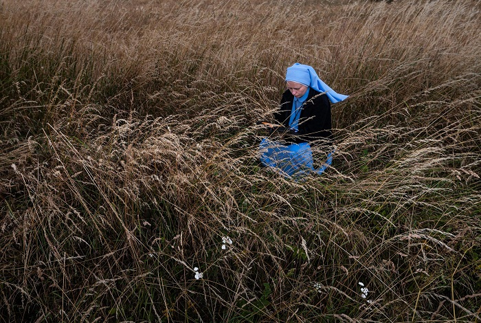Picture of a nun pausing to pray in a field