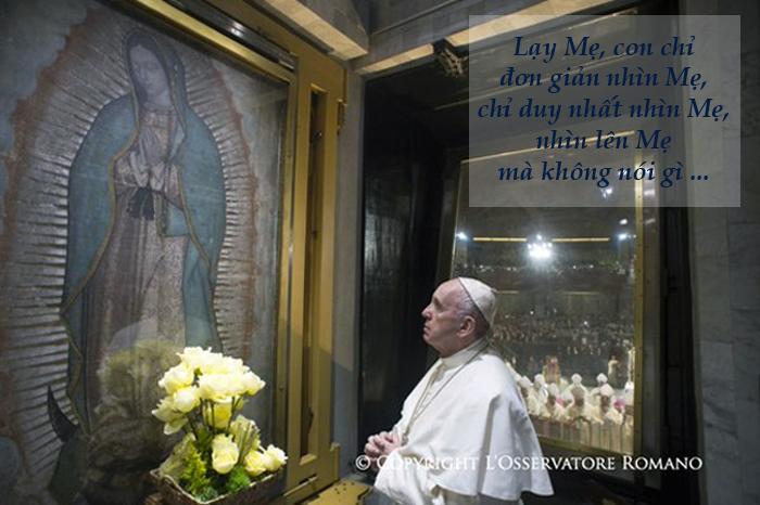 Tweet của Giáo hoàng Phanxicô, 14-02-2016